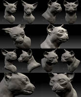 3D Cat sculpt busts