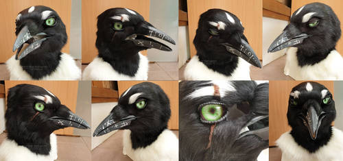 Magpie mask commission
