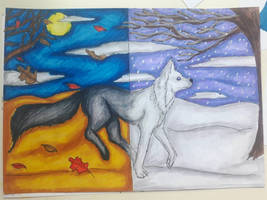Fall to winter wolf