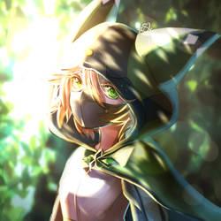054 - Robin Hood by xSilverlight