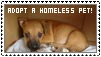 Adopt a homeless puppy stamp by analage
