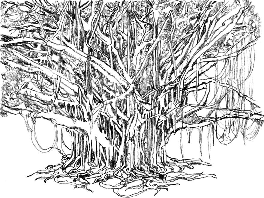 how to draw a creepy tree
