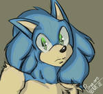 Just Sonic(Huuuh)