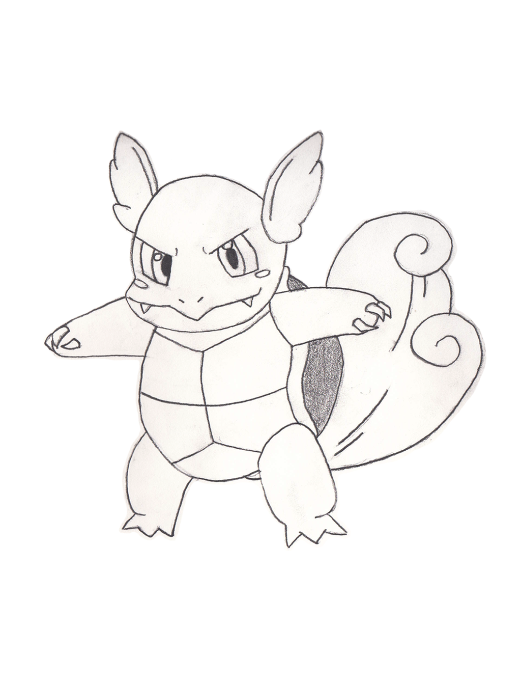 Wartortle sketch by BoomKey on DeviantArt