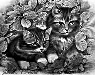 Kitties by 4Blood2Rose0