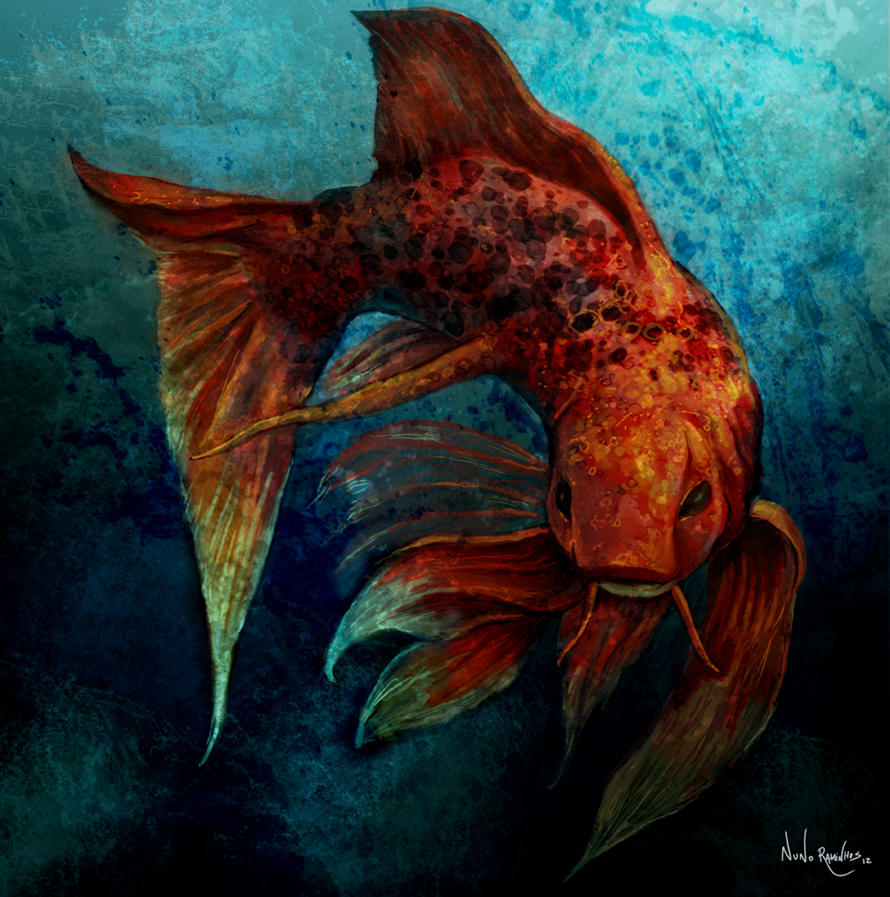 Koi fish by nraminhos on deviantart for Koi fish artwork