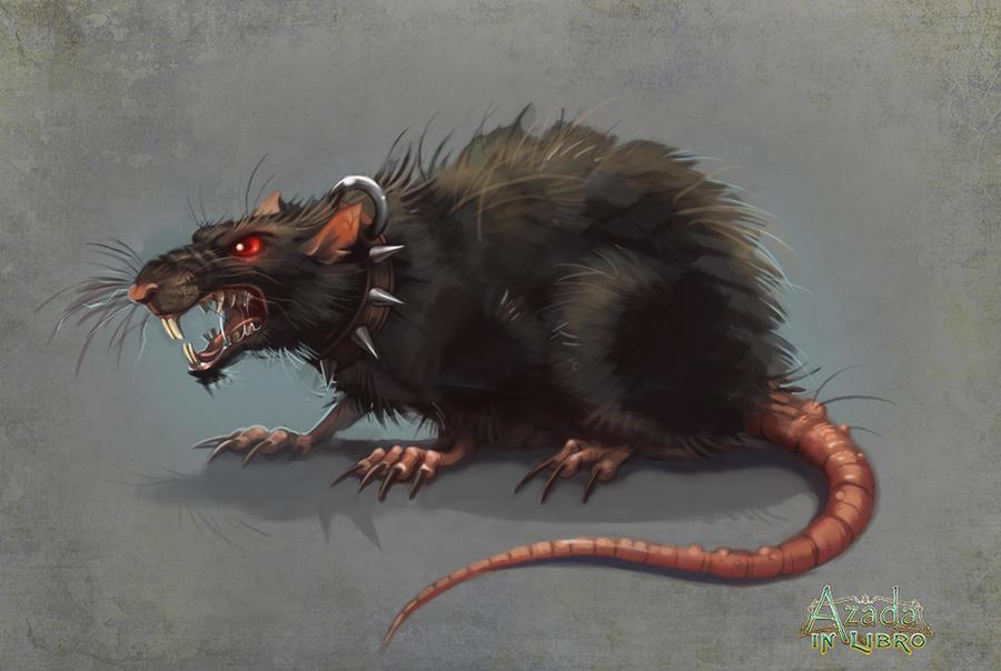 Pin Evil Rat On Pinterest