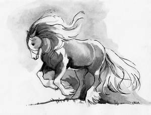 01 Inktober - Gypsy Vanner Horse study.