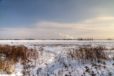 Frozen Saint-Lawrence River by digswolf