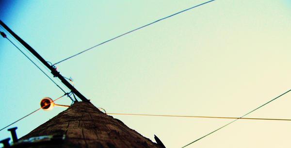 Telephone Pole by HOOPLAHallie