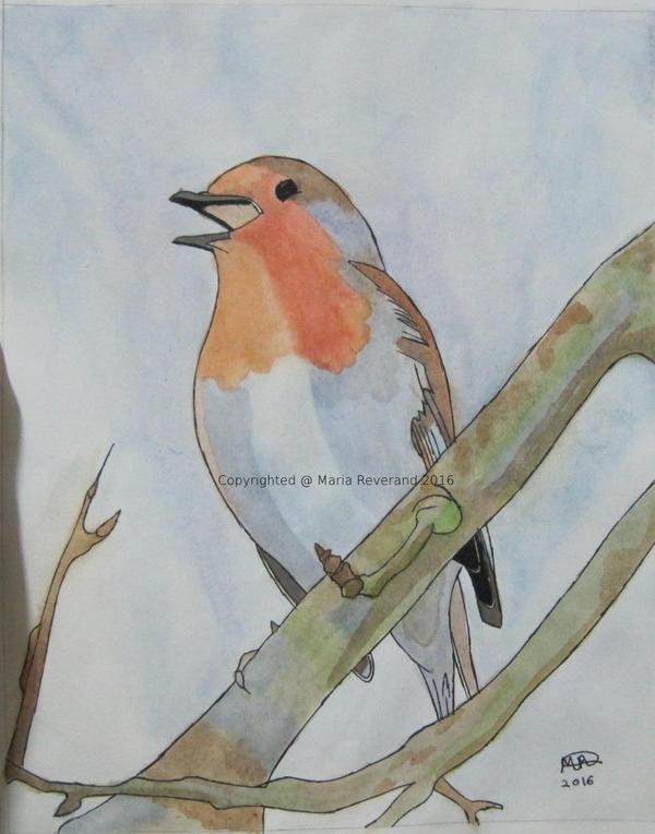 Winter Robin by MarieRiver