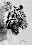 Tiger - {Help me to VOTE my design!]