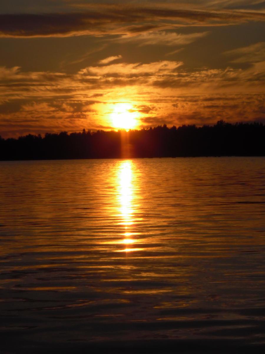 golden sunset by Orkekum