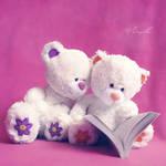 Enjoy the Read