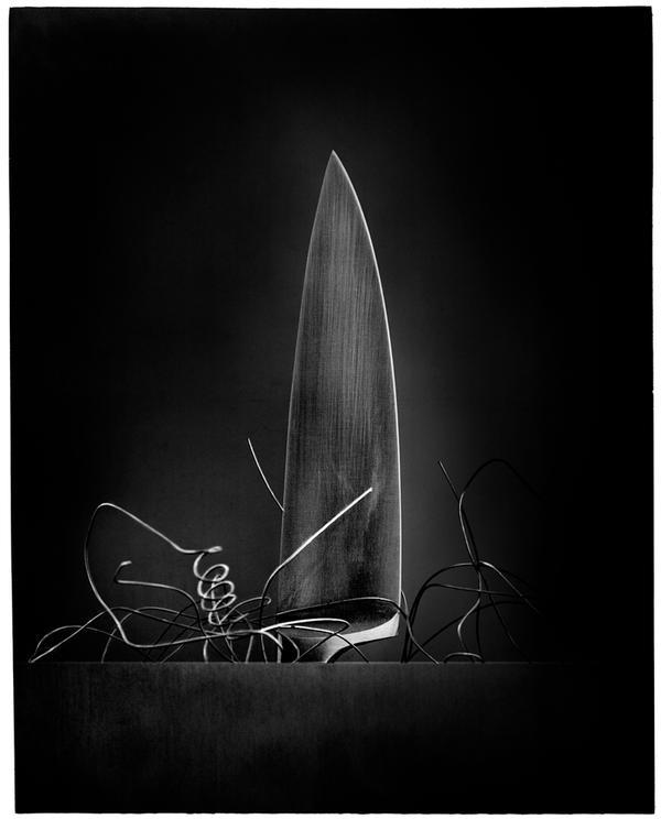 Bouquet de nerfs 2 by edredon