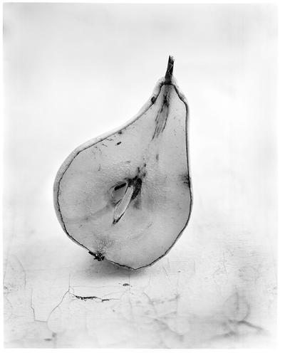 la poire et le moucheron - fin by edredon