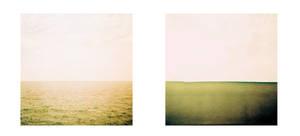 horizon by edredon
