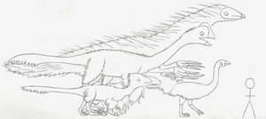 Big Maniraptors