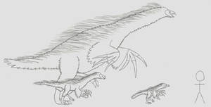 Maniraptors: Therizinosauria