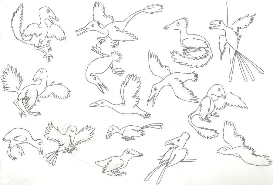 A Panoply of Pennaraptors by Albertonykus