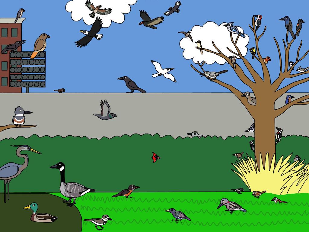 Campus Birding by Albertonykus