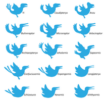 A Field Guide to Mesozoic Twitter Birds by Albertonykus
