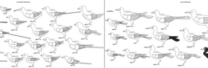 Birdbodies of the Mesozoic by Albertonykus