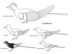 Confuciusornithiformes