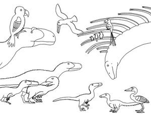 Dinosaur Highlights of 2019