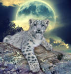 Daughter of the Moon by Lena-Panthera