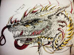 Dragon Drawing 24