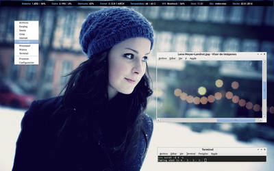 ArchLinux Screenshot January 2014