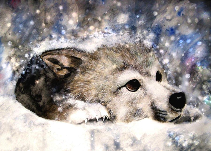 Wolf's Rain Kiba by ZhaoT