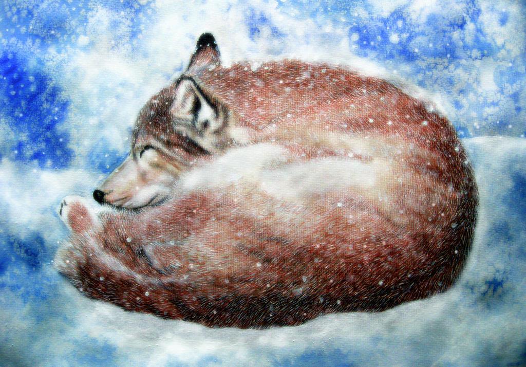 Wolf's Rain Toboe by ZhaoT