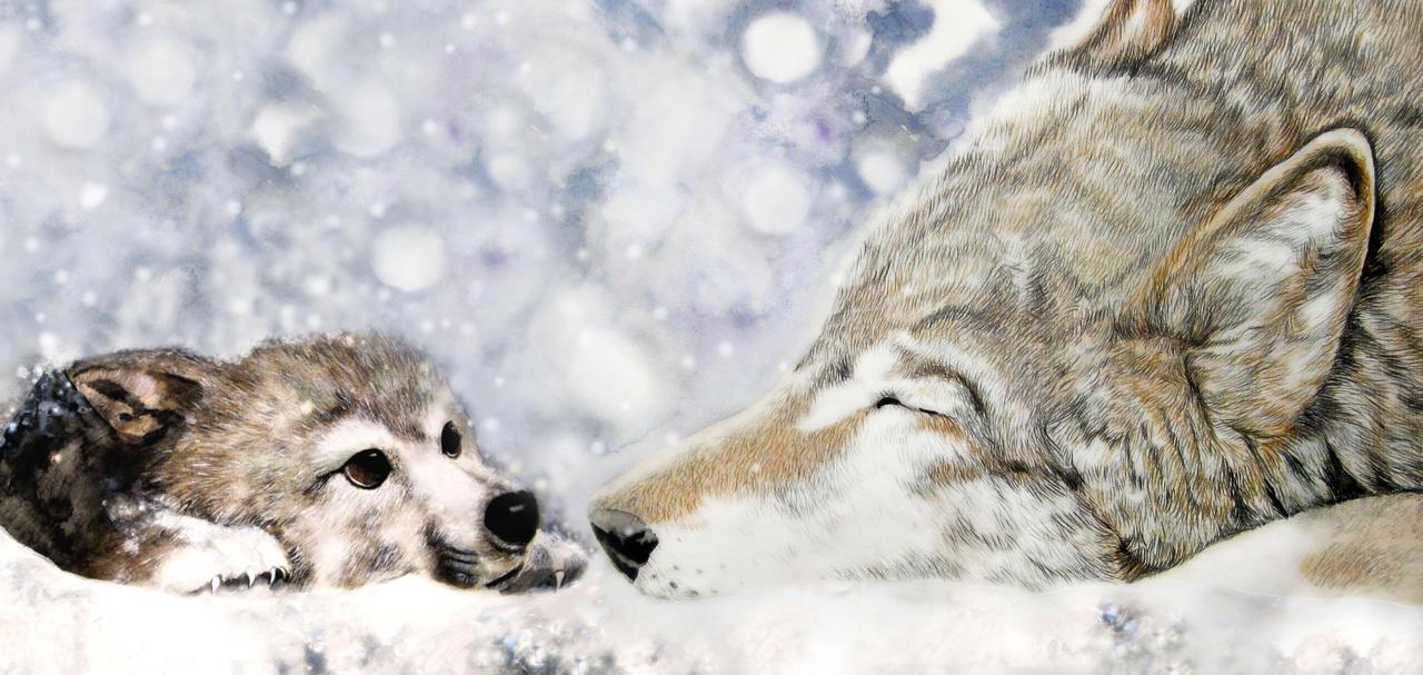 Wolfs Rain by ZhaoT on DeviantArt