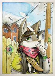 Suburban Soldier