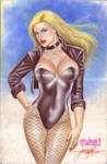 BLACK CANARY by JUN DE FELIPE (05262013)