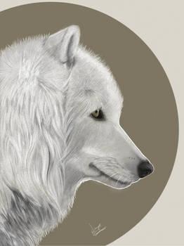 White Wolf Atka