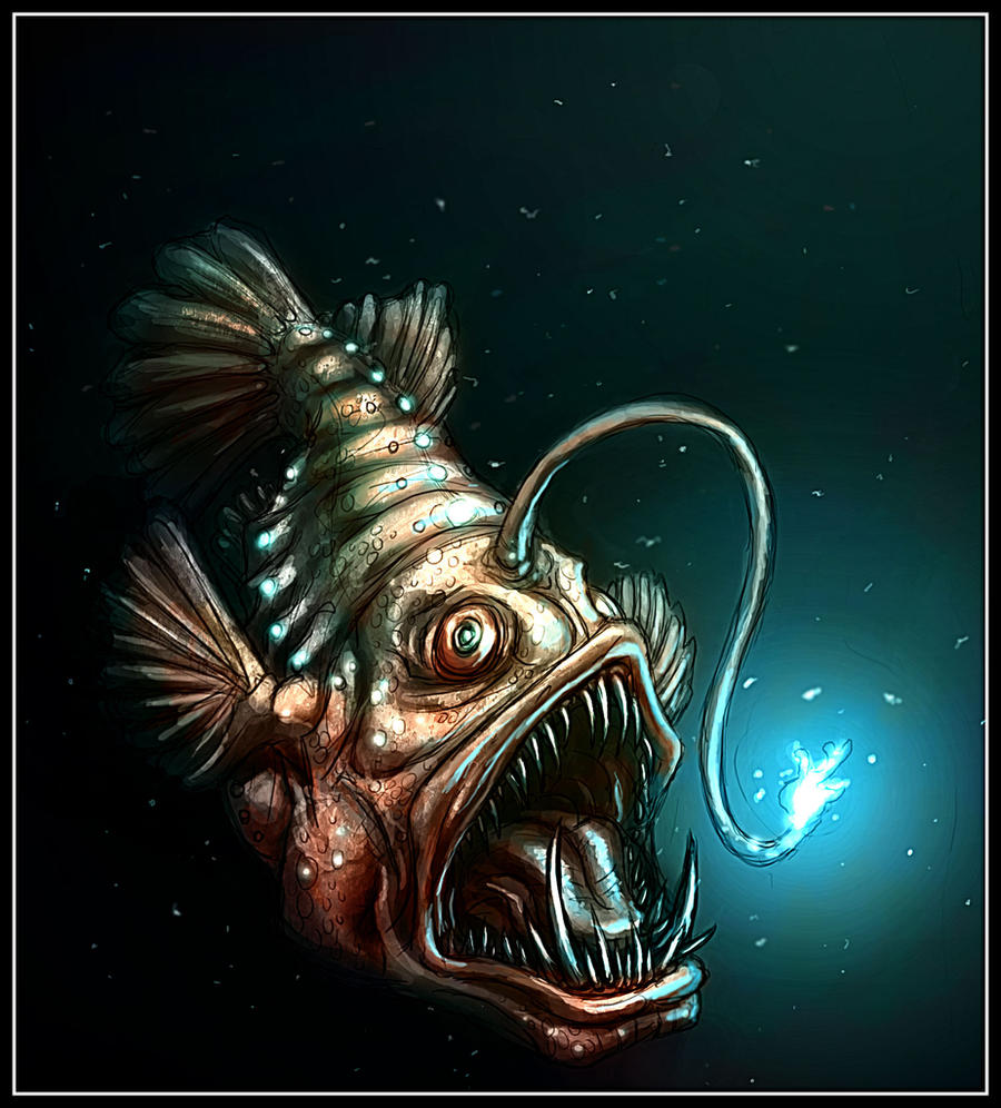 Tattoo ideas google image tattoo angler fish google for What is an angler fish