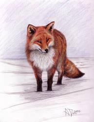 Snow Fox by Kiartia