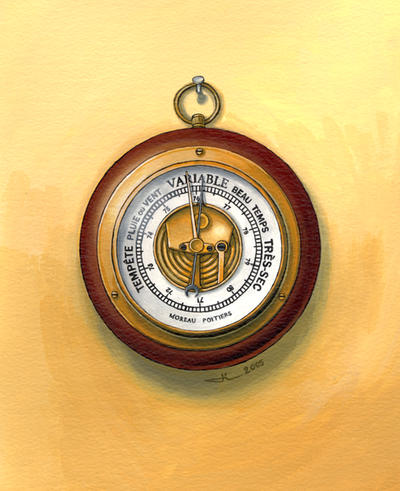 The barometer by jilub