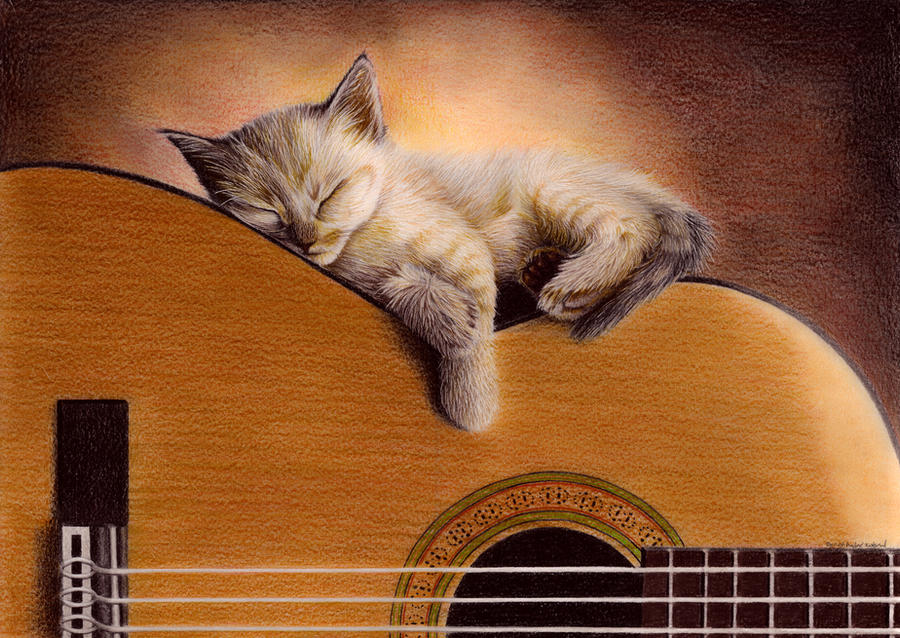 Cat On Guitar by Bengtern