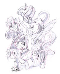 Silly Ponies