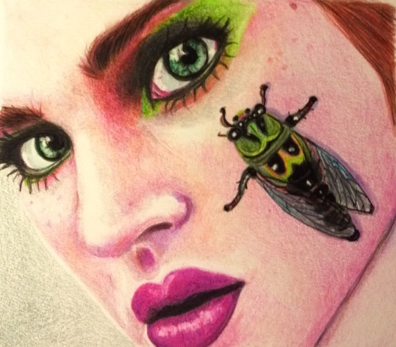 Cicada by lemgras330
