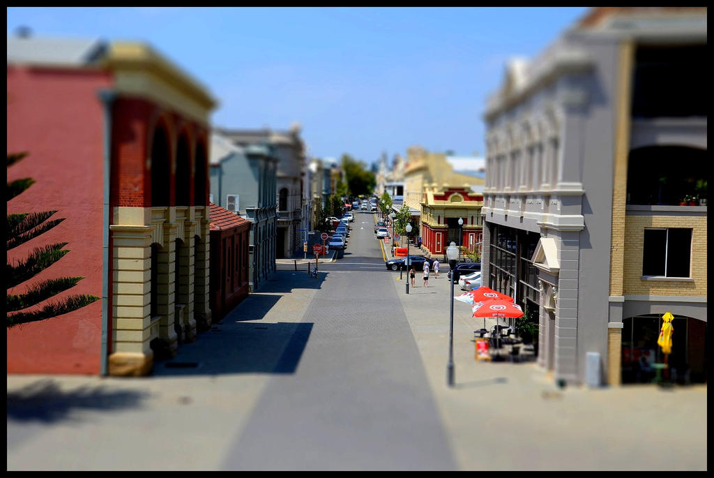 Tiny Freo by ShesABromide