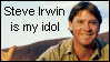 Steve Irwin Idol Stamp by Blue-Cup