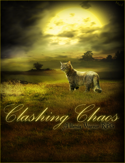 Chasing Chaos by MudBug93