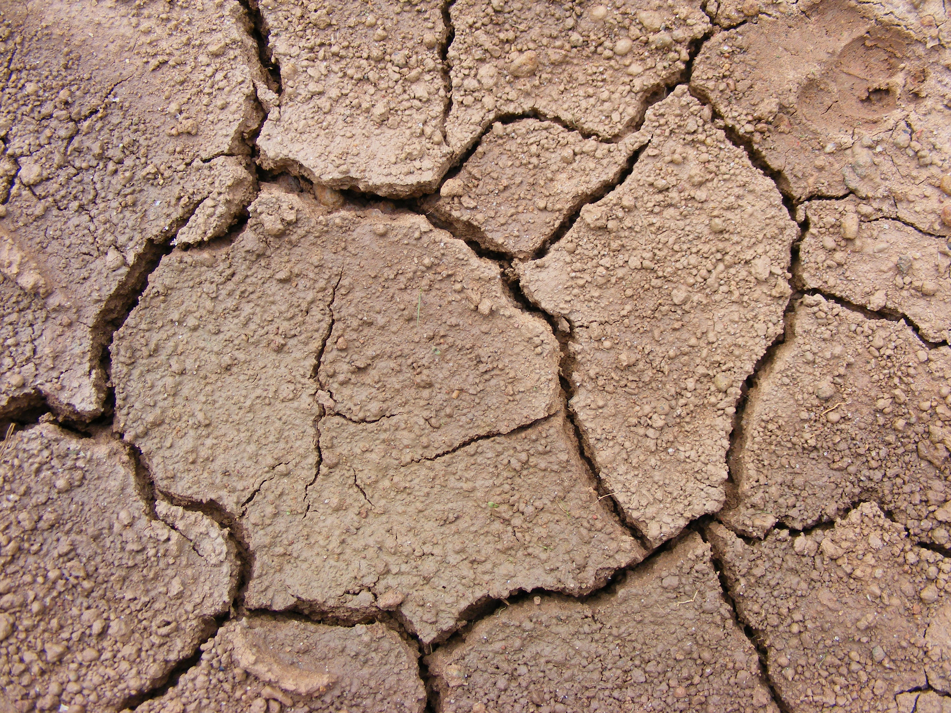 Cracked Soil by Artfans