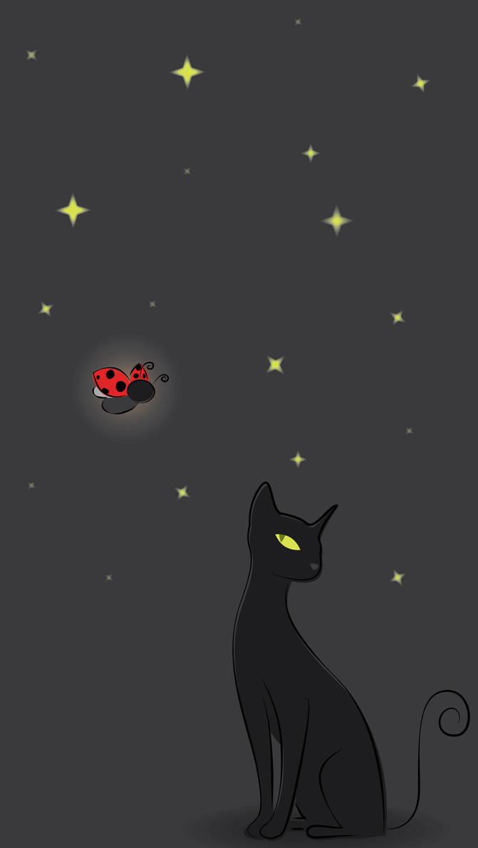 Cat Noir Wallpaper Iphone