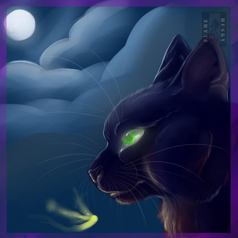 Cat by Husky-Foxgryph